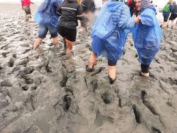 mudflat hiking