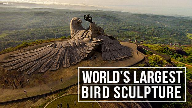 Worlds-largest-bird-sculpture